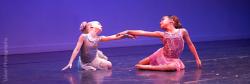 Performance-Ensembles